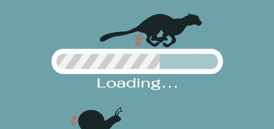 Cartoon loading bars with silhouettes of cheetah and snail